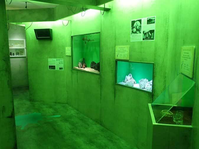 サンシャイン水族館「もうどく展2」~毒を利活用する生物~_b0355317_21593020.jpg