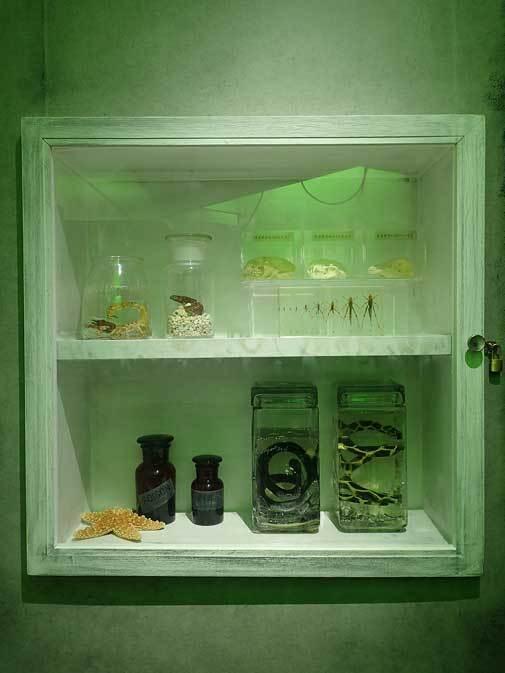 サンシャイン水族館「もうどく展2」~毒を利活用する生物~_b0355317_22003029.jpg