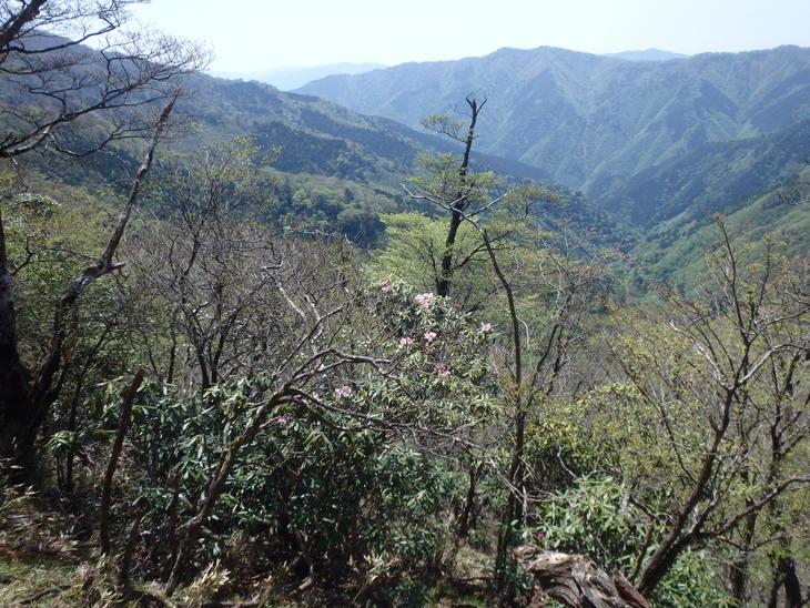 f0193521_2011373.jpg