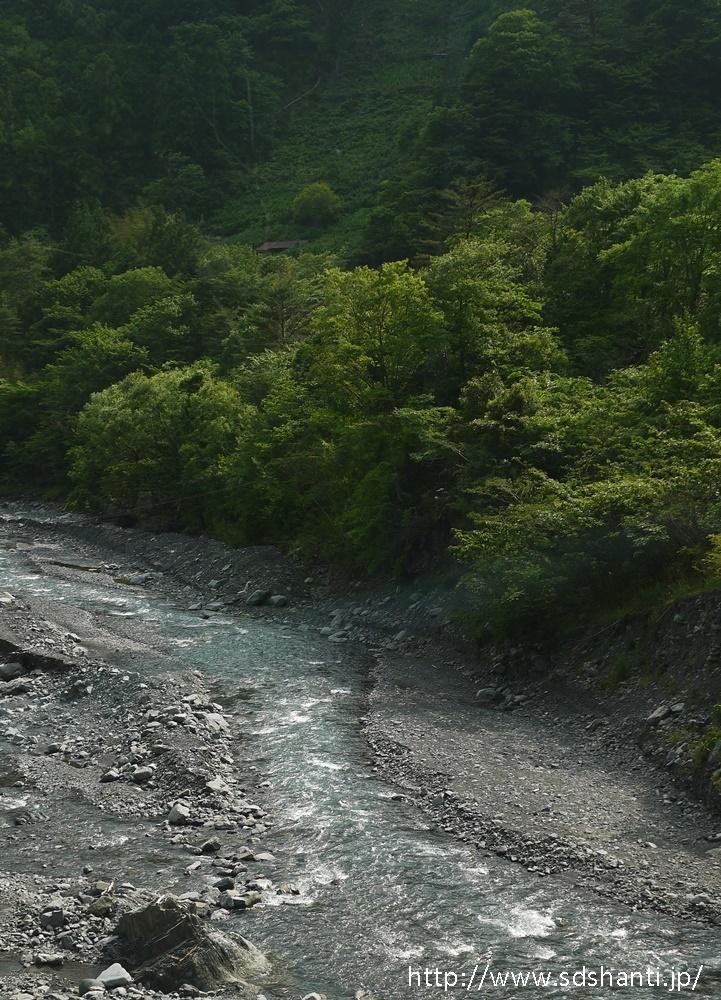 大人の遠足 静岡県梅ヶ島「隠れ茶の里へ」_a0169924_09274262.jpg