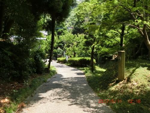 伊万里から平戸へ_c0347126_05433482.jpg