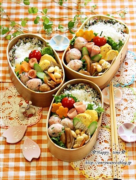 ありもの仕様でお弁当と薔薇のつぼみ♪_f0348032_17575436.jpg