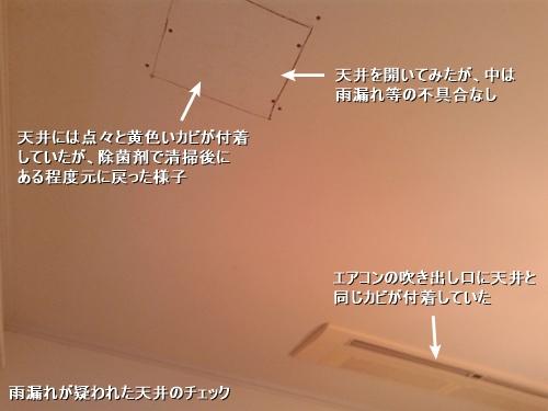 c0108065_14111265.jpg