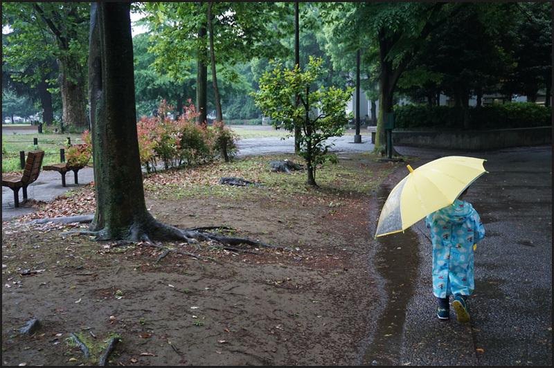 なんだか梅雨時のような雨の東京_b0019313_16271597.jpg