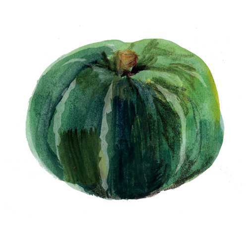#かぼちゃ 断面とまあるいの。大戸屋食育キャンペーン_f0172313_02004130.jpg
