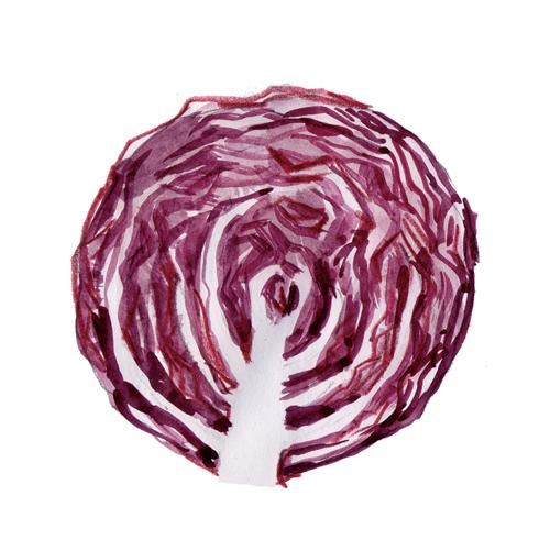 紫キャベツ 大戸屋食育キャンペーン_f0172313_02034757.jpg