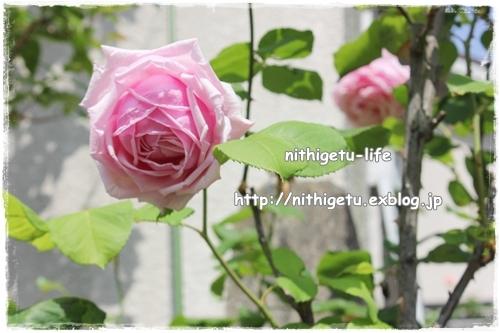c0323244_00394439.jpg