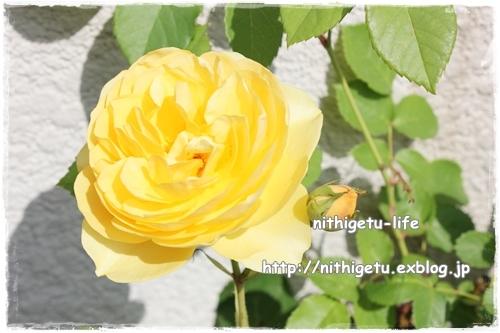 c0323244_00394668.jpg