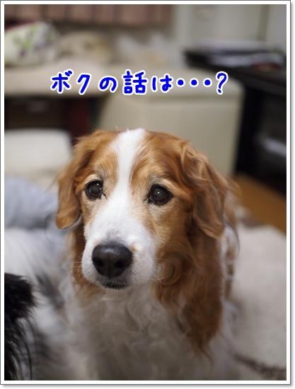 d0013149_00432483.jpg