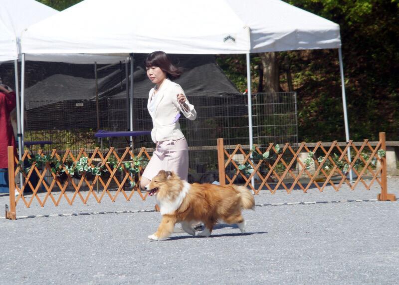 神奈川むさしの合同展_f0126965_09111778.jpg