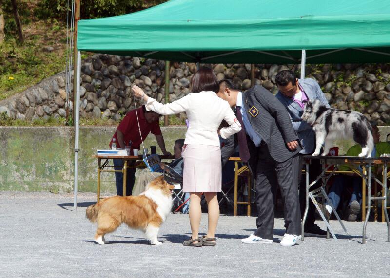 神奈川むさしの合同展_f0126965_09111846.jpg