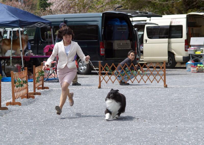 神奈川むさしの合同展_f0126965_09111876.jpg