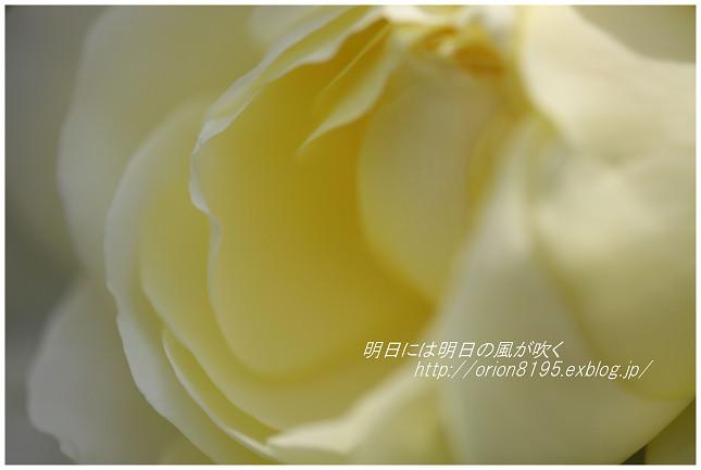 f0361079_18134785.jpg