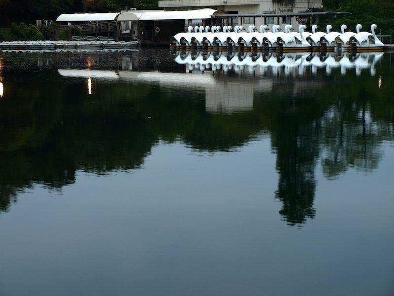 Tokyo Travel Guide Kichijoji Sightseeing 100 -001 Inokashira Park (pond forest cherry blossoms)_e0122680_16032610.jpg