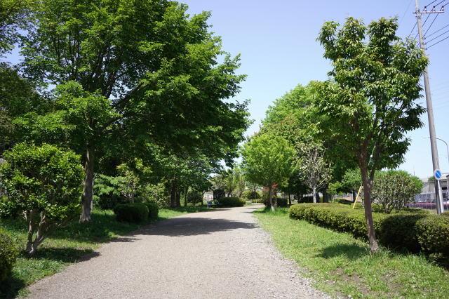 f0369780_20084917.jpg