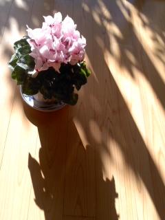 オンレイ/RIKIMARU Ushio Exhibition_d0090888_10391999.jpg