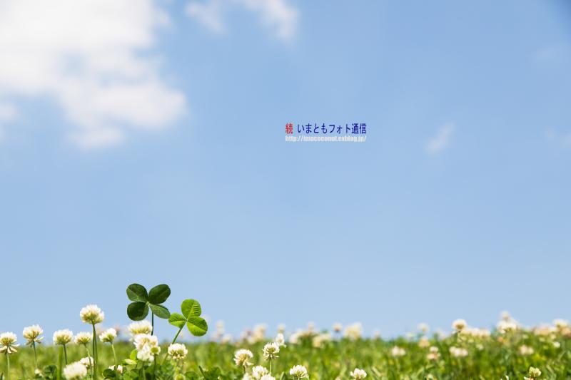 f0308134_13401048.jpg
