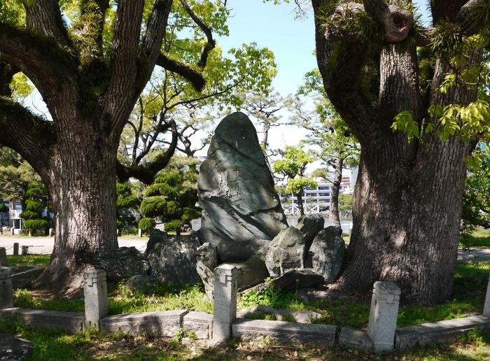 大日本帝国憲法(明治憲法)発布30年記念樹_b0093754_2034292.jpg