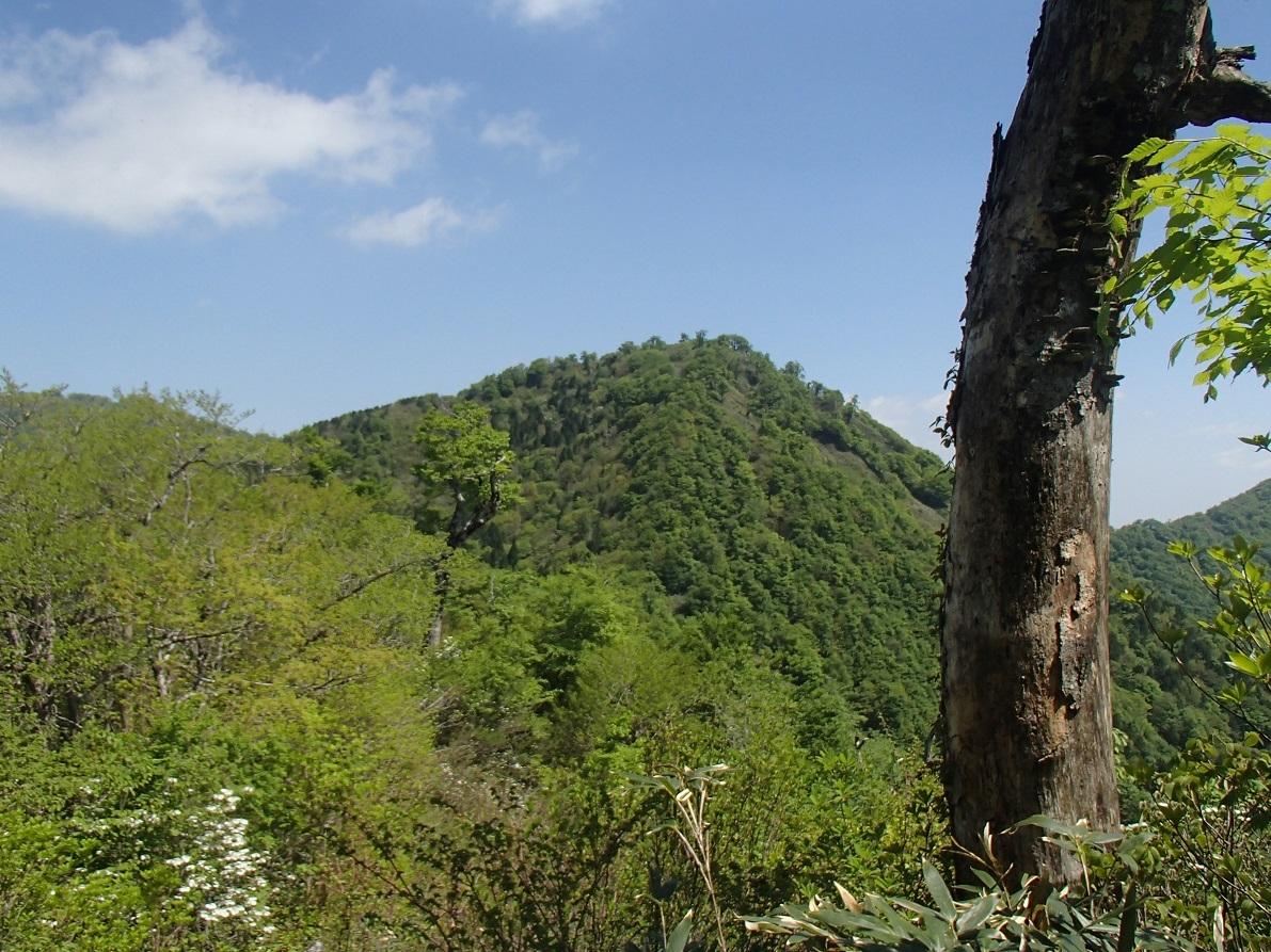 皆ガ山(1.159m)登山_d0007657_16372625.jpg