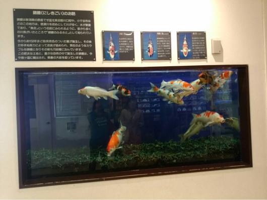 JCC新潟60周年記念展_f0126965_21104174.jpg