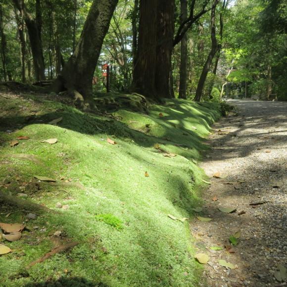 西大寺を北に歩いて行くと_c0001670_16120292.jpg