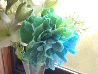 花からのイメージング***_e0290872_16542393.jpg