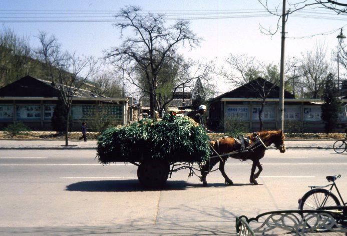 1986年の北京の街道光景_c0182775_14220100.jpg