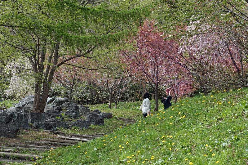 西野西公園_d0162994_10012006.jpg