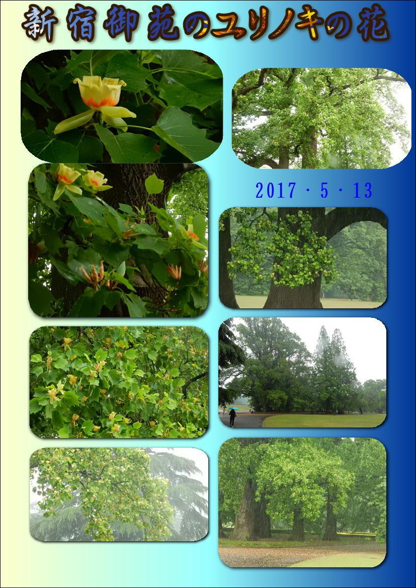 f0231709_20042498.jpg