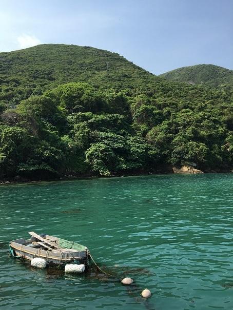 鯉魚門・三家村碼頭からフェリーで行く!思ったよりきつかった東龍洲 (前編)☆Tung Lung Chau Island Part One_f0371533_18125130.jpg