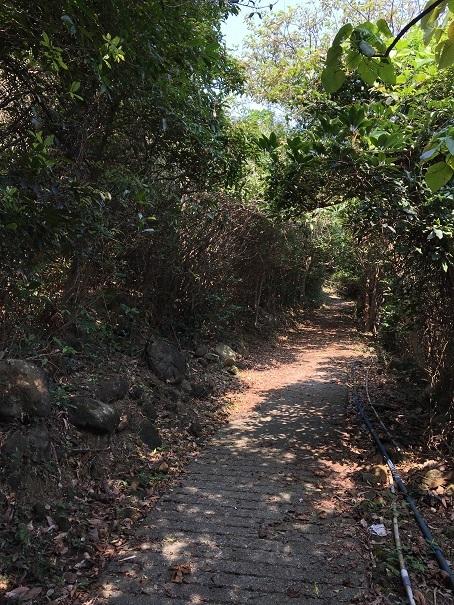 鯉魚門・三家村碼頭からフェリーで行く!思ったよりきつかった東龍洲 (前編)☆Tung Lung Chau Island Part One_f0371533_18132051.jpg