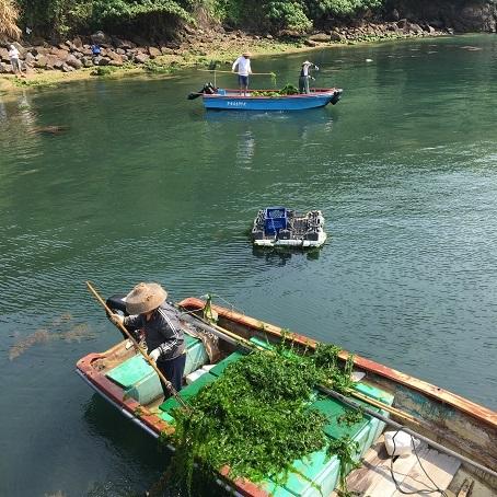 透き通る海が美しい!思ったよりきつかった東龍洲 (後編)☆Tung Lung Chau Island Part Two_f0371533_18572161.jpg