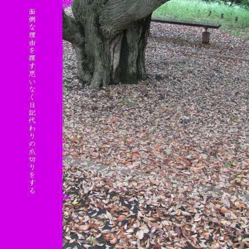 f0117041_05210516.jpg