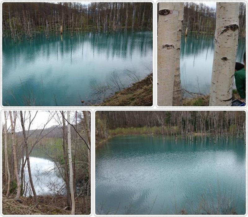 春の白金・青い池へ_b0236665_11130571.jpg