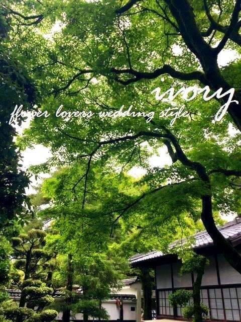 『週末の婚礼から〜♬』_b0094378_17253375.jpg