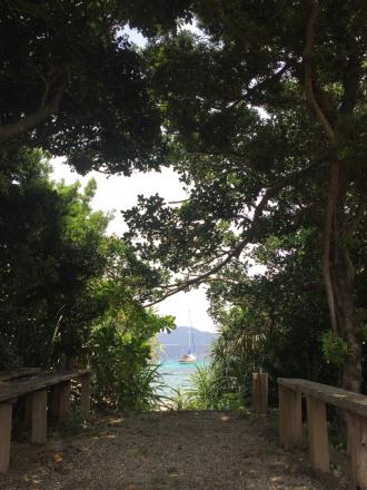 スリ浜、今日の緑の額縁_e0028387_23000202.jpg