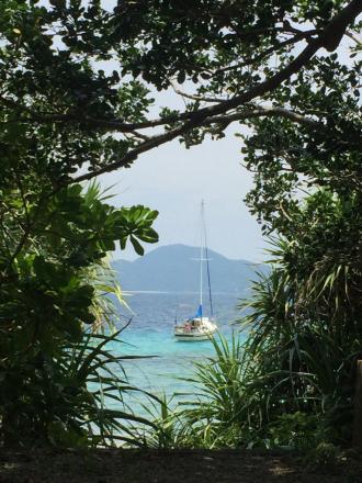スリ浜、今日の緑の額縁_e0028387_23000300.jpg