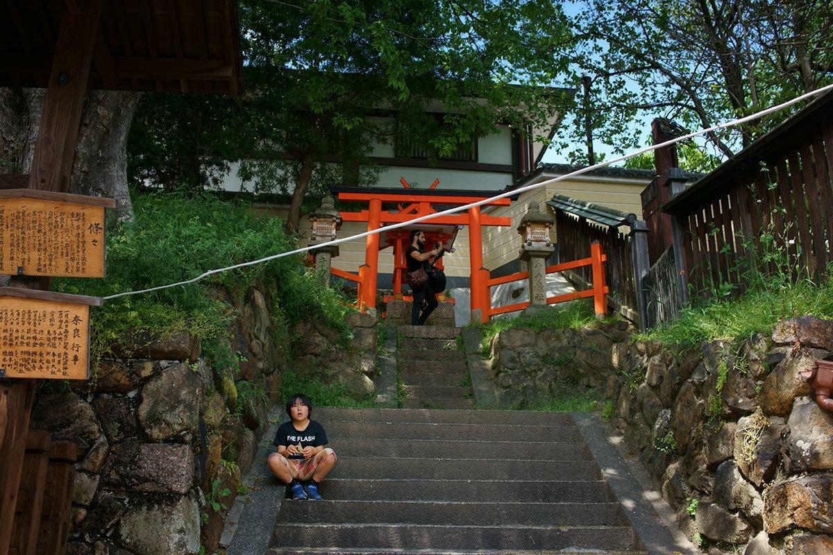 逆走する風景 Snaps, Nara City #RX1RII_c0065410_23002002.jpg