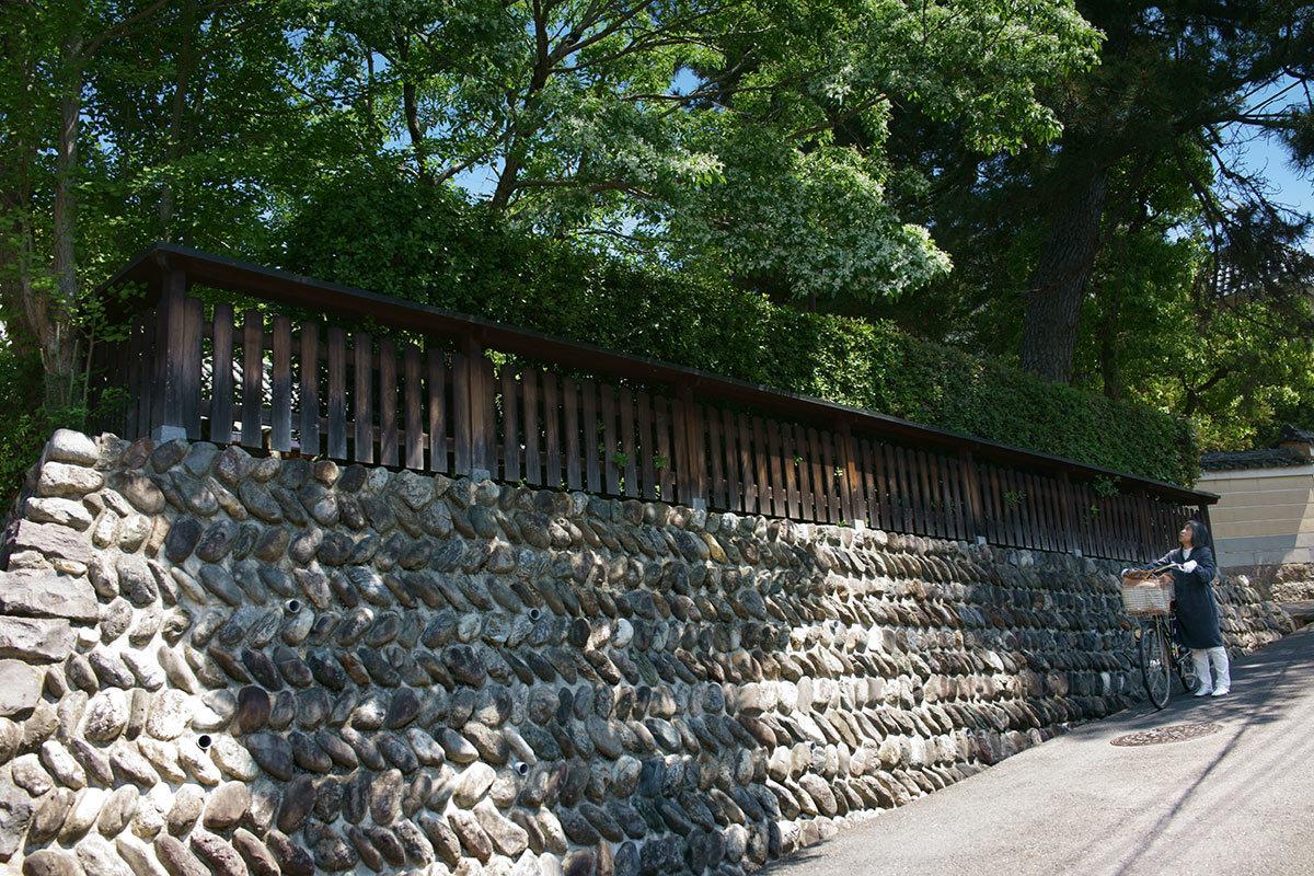 逆走する風景 Snaps, Nara City #RX1RII_c0065410_23002894.jpg