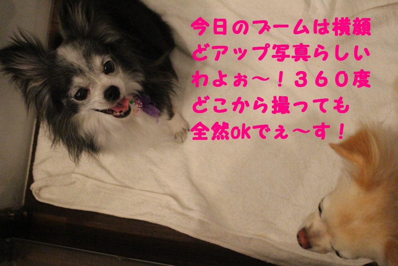 尊敬しちゃう~!!_b0130018_08041906.jpg