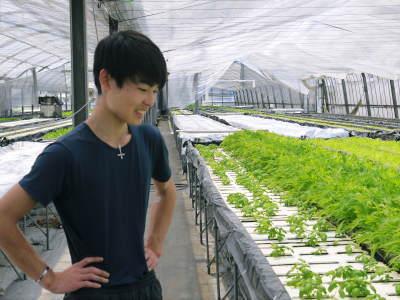 水耕栽培の朝採り新鮮野菜 フレッシュバジルの販売に向けて!_a0254656_18311811.jpg