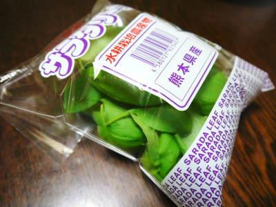水耕栽培の朝採り新鮮野菜 フレッシュバジルの販売に向けて!_a0254656_18344647.jpg