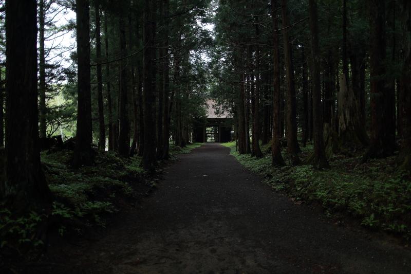 早池峯神社ガイド(桜の残存)_f0075075_15353846.jpg