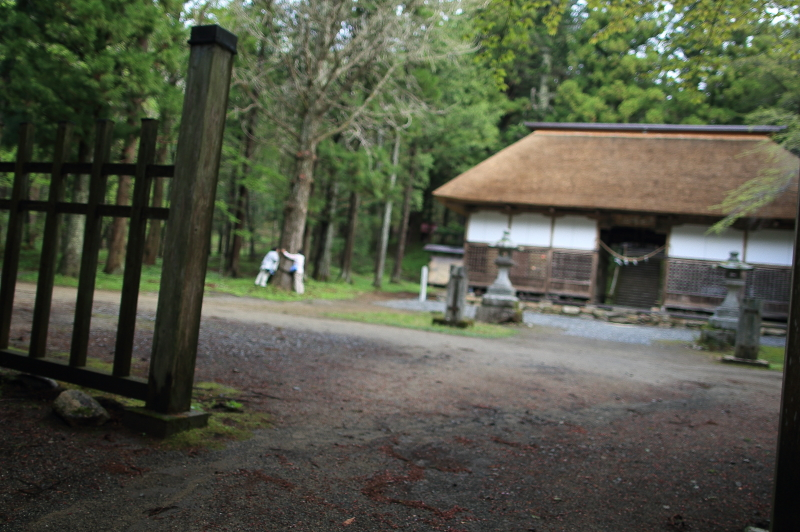 早池峯神社ガイド(桜の残存)_f0075075_153758.jpg