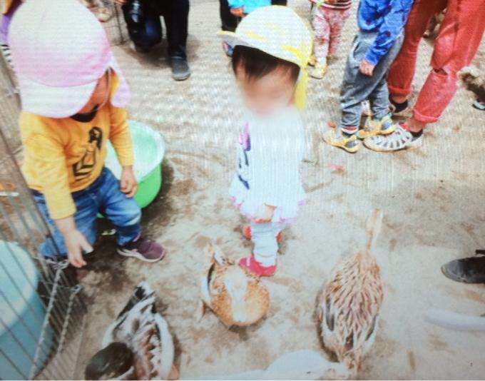 動物村にいってきました(^^)2_c0293682_17324523.jpg