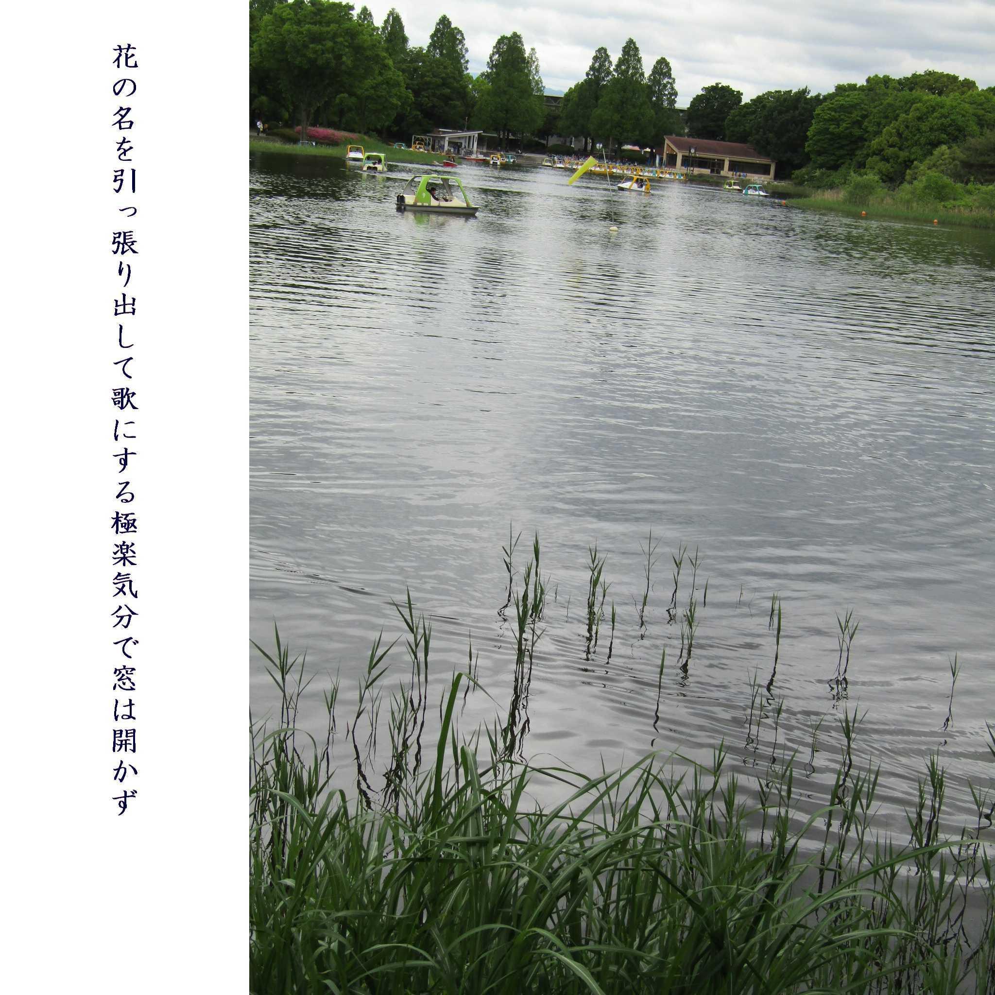 f0117041_06341241.jpg