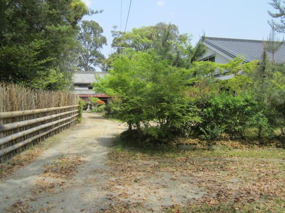 賀茂神社の古墳・うきはの春_a0237545_10314432.jpg