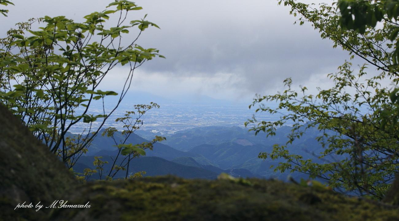 Singin\'in the rain Ⅲ_c0217255_18584627.jpg