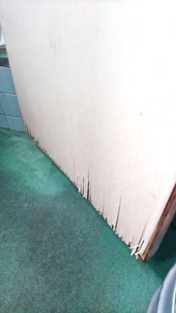 トイレの神様_a0128408_1092149.jpg