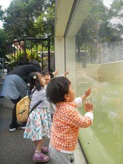上野動物園_f0153418_11594849.jpg